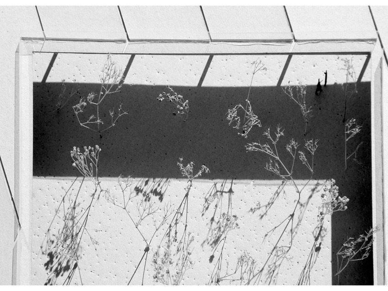 06_garden-memory_serra