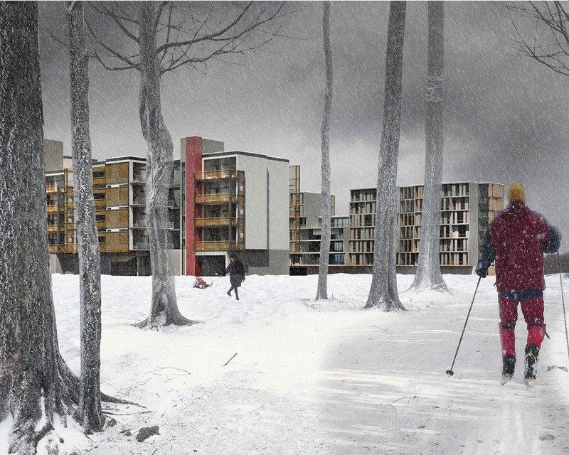 06_urban-backyard_marin