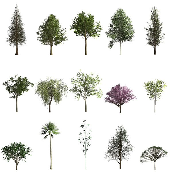 Adobe Photoshop Trees